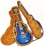 Douglas EGC-450LP Black/Gold Les Paul Case