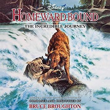 Homeward Bound: The Incredible Journey (Original Motion Picture Soundtrack)