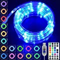 LED Rope Lights Outdoor 16 Colors,33ft 100 LED Fairy String Lights, Changing Twinkle Led Lights with Remote USB Powered,Waterproof Clear Tube Outdoor Rope Lights for Bedroom,Garden,Party,Patio