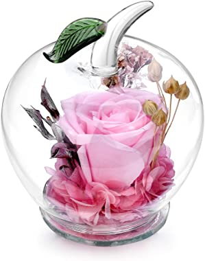 DeFancy Handmade Preserved Flowers Rose Decor with Apple-shaped Glass-Best Gift for Valentine's Day,Mother's Day,Birthday (Pink)