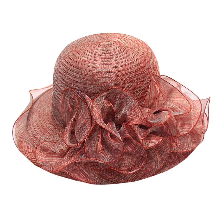 Kinglly Elegant Women's Organza Church Kentucky Derby Fascinator Bridal Tea Party Wedding Hat