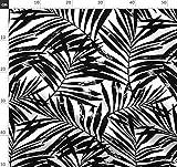 Tropisch, Palme, Schwarz Und Weiß, Schwarz Weiß, Blatt,