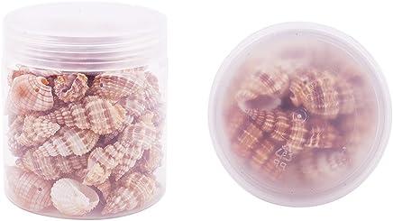 PandaHall 1 Caja aproximamente 200-300 PC Peque?as Conchas de mar Caracoles ovalados de la Playa oce/¨/¢nica encantos artesanales Longitud 9-12mm para Hacer artesanias a casa Deco
