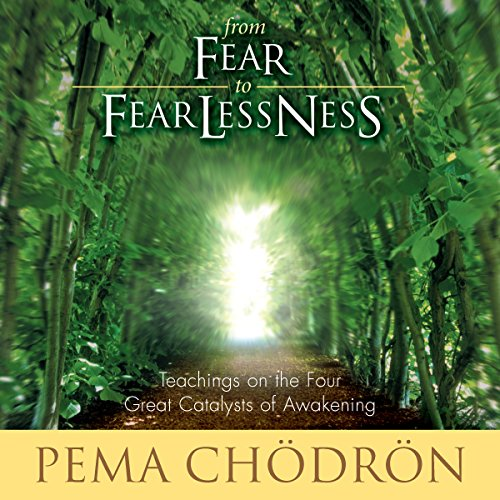 From Fear to Fearlessness audiobook cover art