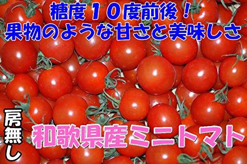 高糖度10度 和歌山産 808 ミニトマト 2kg 房なし フルーツトマト
