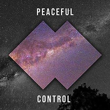 # Peaceful Control