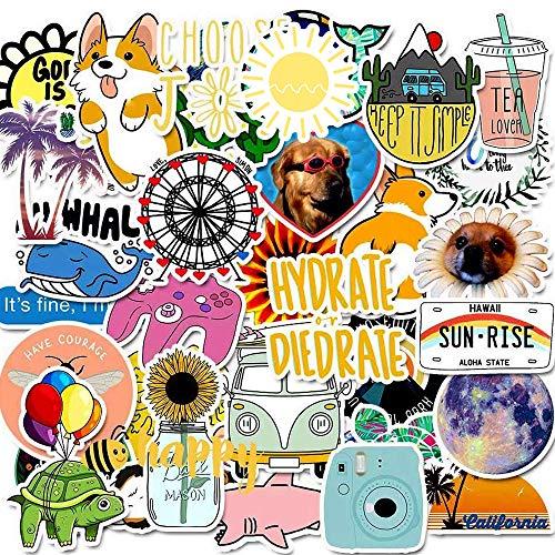 Laptop Stickers Decals 50 Pack for Water Bottles Skateboard Pad MacBook Phone Car Teens Girls Cute Stickers