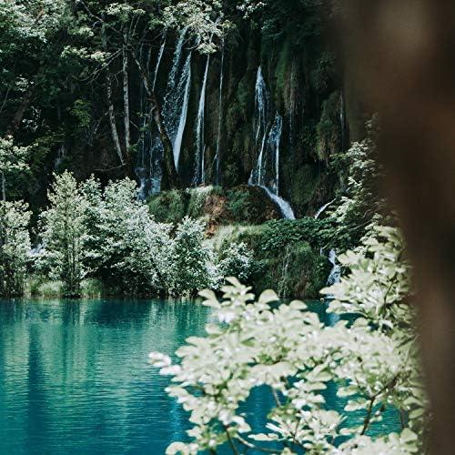 Nature Sounds, Alpha Brain Waves & Deep Sleep