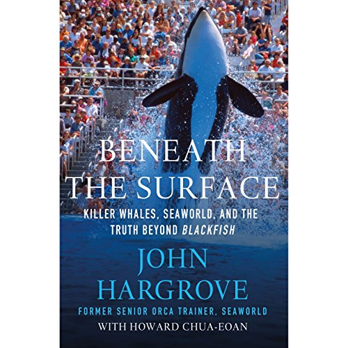 Beneath the Surface audiobook cover art
