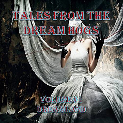Tales from the Dream Hogs audiobook cover art