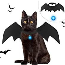 Mitcien Pet Cat Halloween Costume Cat Collar LED Bat Wings Black for Pet Halloween Costumes for Cats Small Dogs Puppy Costume Accessories