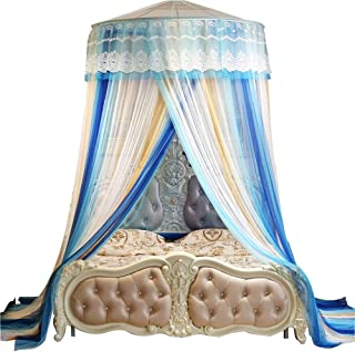 Lyj Dome Ceiling Home Mosquito Net,Ceiling Dome Princess Home Floor Mosquito Net 1.5/1.8/2m Bed for Home Or Travel Children Fly Insect Protection (Color : Blue)