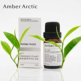 AMBER ARCTIC Tea Tree Essential Oil for Diffuser, 100% Pure Fresh Organic Plant Therapy Tea Tree Oil 10ml/0.33oz