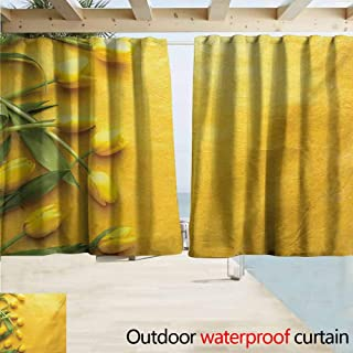XXANS Blackout Lining Curtain Yellow Danish Dutch Tulips on Colored Wall Garden Floral Love Lily Herbs Artful Print,W72x63L Inches,Complete Darkness, Noise Reducing Curtain Yellow Green