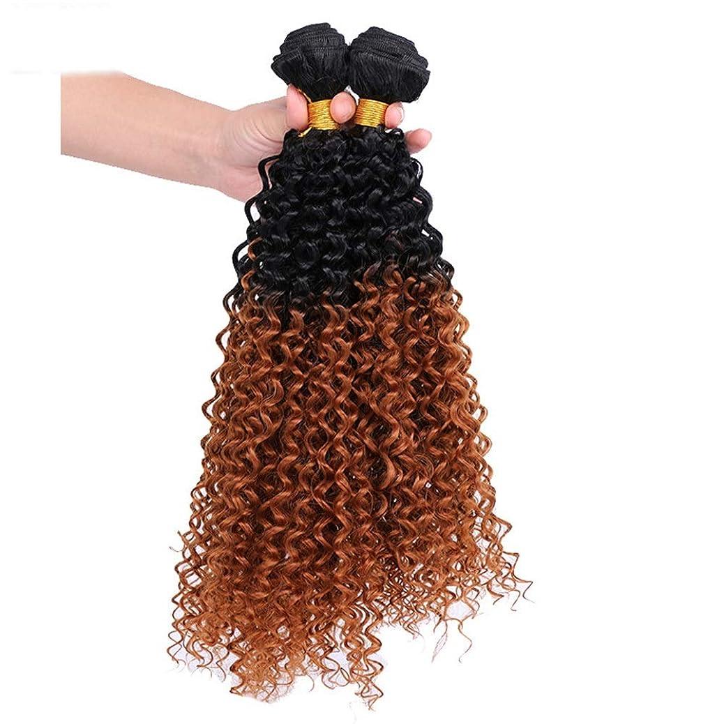 嘆願猫背シンクYrattary 茶色のグラデーション巻き毛の女性のためのコスプレパーティードレス(3バンドル)合成髪レースかつらロールプレイングかつらロングとショートの女性自然 (色 : ブラウン, サイズ : 20inch)