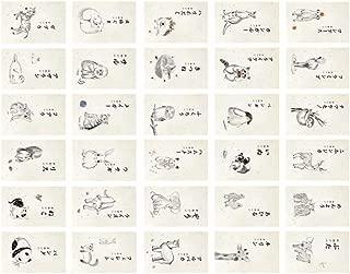 Tarjetas Postales del tema de los animales del zo Postales