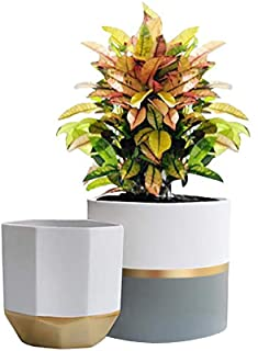 """White Ceramic Flower Pot Garden Planters 6.5"""" Pack 2 Indoor Plant Containers with Gold and Grey Detailing"""