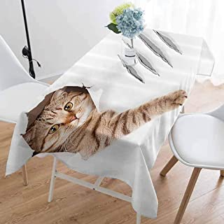 kangkaishi Animal Oil-Resistant and Durable Long Tablecloth Funny Cat in Wallpaper Hole with Claw Scratches Playful Kitten Cute Pet Picture Kitchen Available W54 x L84 Inch Brown White