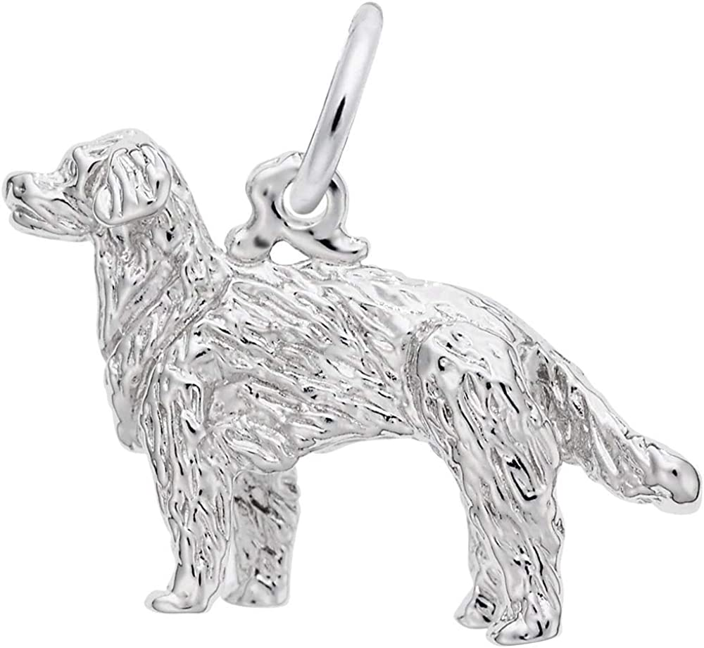 REMBRANDT CHARMS Golden Retriever Dog overseas Ste 1097 Chicago Mall Style Charm -