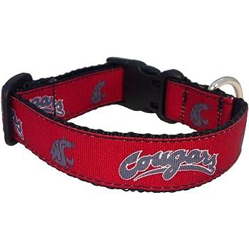 Team Color, Medium NCAA Washington Huskies Dog Collar