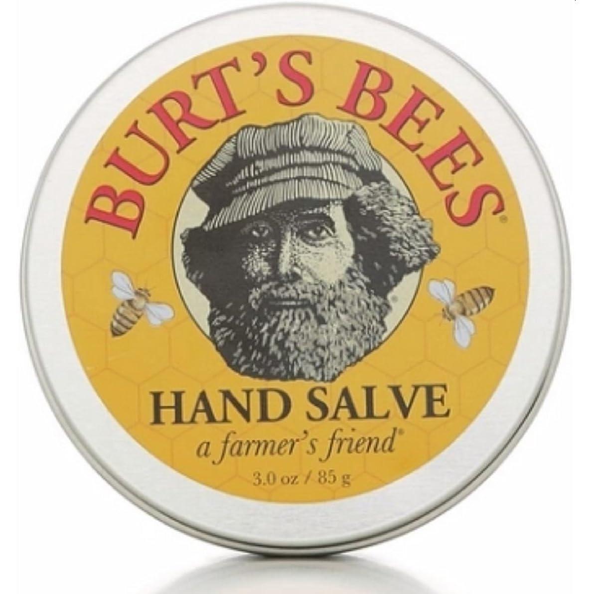 放棄花瓶ワームバーツビーズ Burts Bees ハンドサルブ 85g 【並行輸入品】
