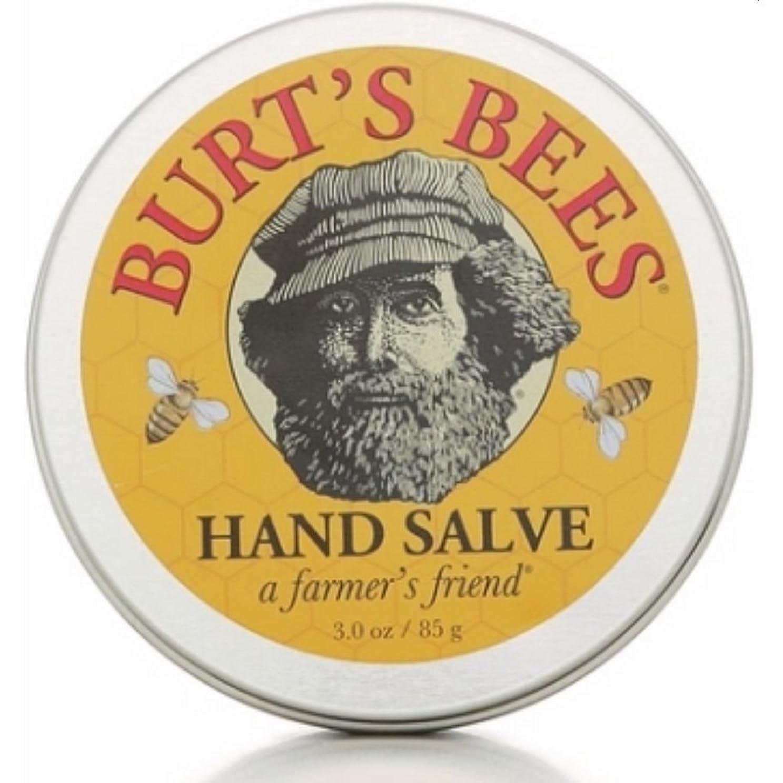 素晴らしいやるのどバーツビーズ Burts Bees ハンドサルブ 85g 【並行輸入品】
