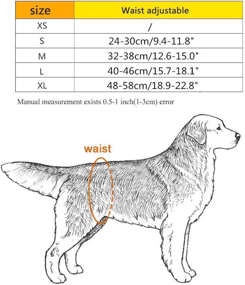 WFWUK Pa/ñAles para Perros Pa/ñAles para Perros Macho Pa/ñales para Perros Perro sanitarias Pantalones Perro Regalo Hombre Pa/ñales para Perros peque/ños Blue,s