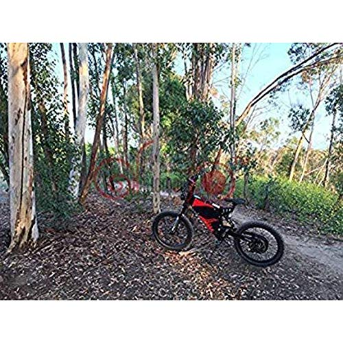 E-MTB LPsweet 72V 3000WFC-1 E-Mountainbike Bild 6*