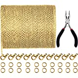 Jovitec 39.4 Feet 2 mm Link Chain Necklace Jewelry Plier with 30 Pieces Lobster Clasps and 100 Pieces Jump...