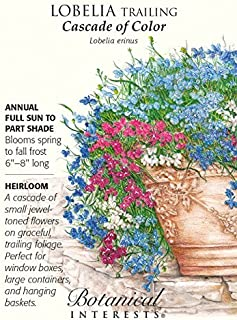 Lobelia Cascade of Color Seed by Hirts: Seed; Annual