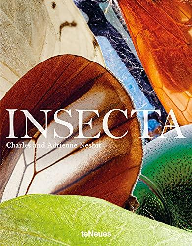 Insecta. Ein großformatiger Bildband...