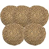 Big Bargain Store trivets para mesa trivets para platos calientes diámetro de 15.7 in, juego de 6 los manteles individuales de jacinto de agua son manteles individuales redondos Los manteles