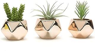 Nattol Mini Gold Succulent Planter, 3 inch Geometric Air Planter Pots, Set of 3