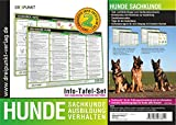Hunde Sachkunde: Hunde - Sachkunde, Ausbildung und Verhalten von 20/40-Hunden