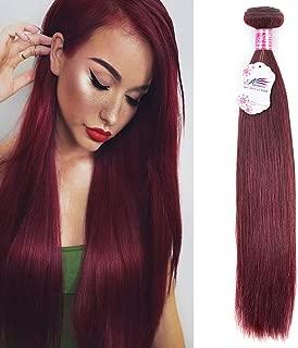Anruina 99J Red Straight Hair Bundles A Single Bundle 18 inch 100g Single Bundles 8A Brazilian Virgin Human Hair Extensions Weave Red Straight Hair (18, 99j)