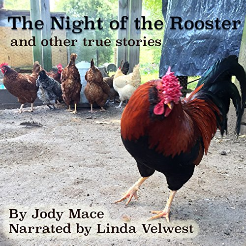 The Night of the Rooster and Other True Stories audiobook cover art