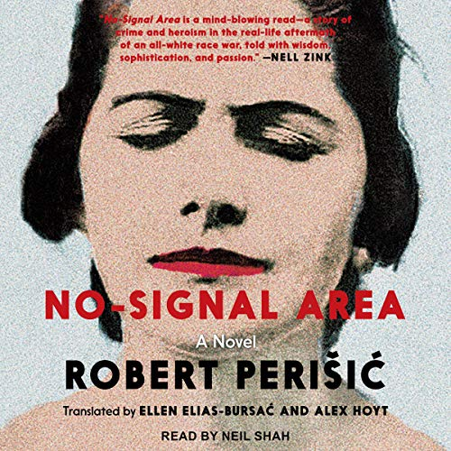 No-Signal Area cover art
