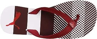 Puma Unisex's Stream Flip Idp Fig-Pomegranate Flops