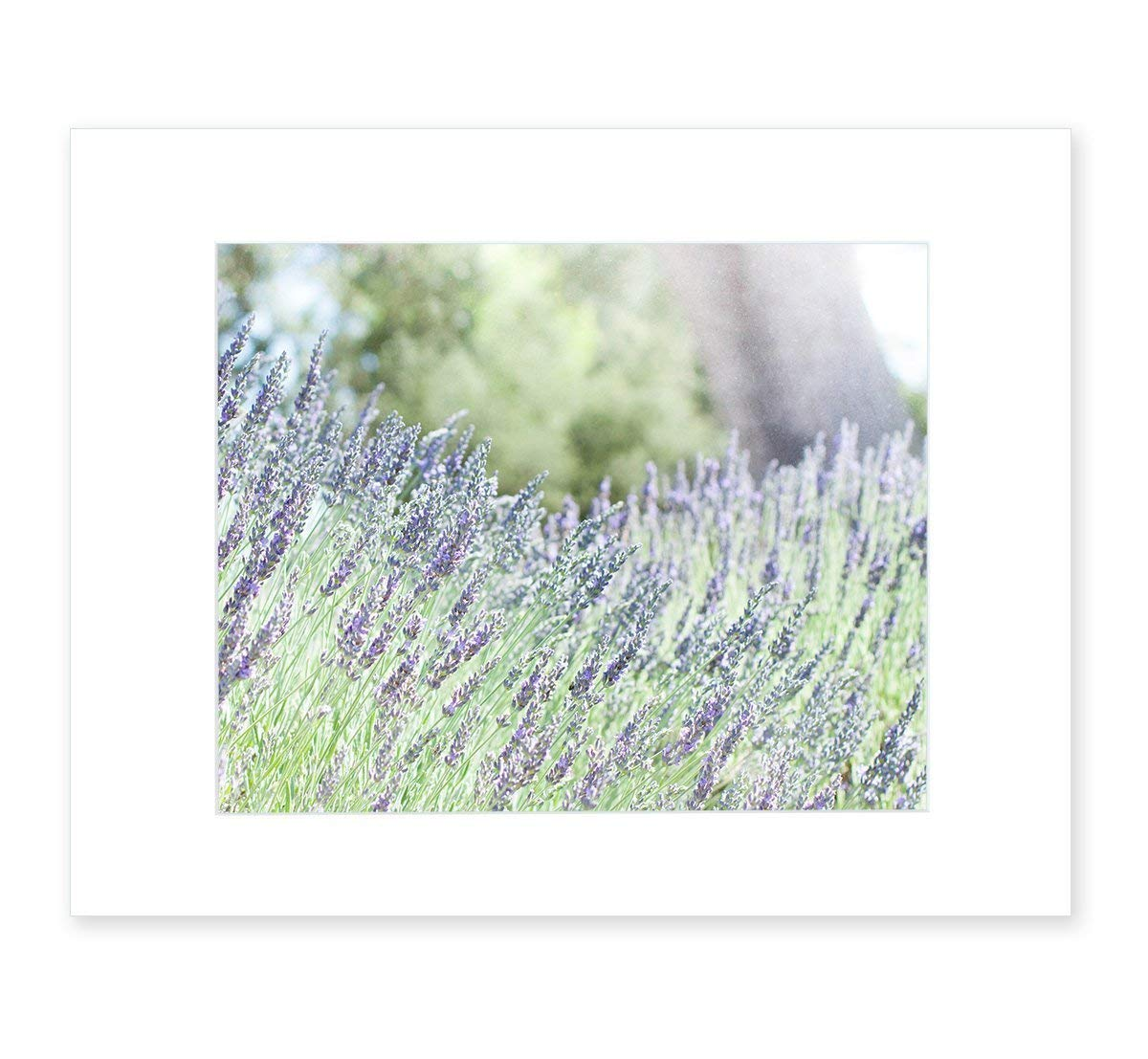 Rustic Wall Art 55% OFF Flowers Purple Decor Farmhouse Floral Lavender High quality new