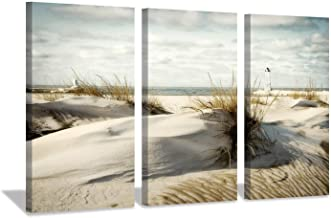 Hardy Gallery Beach Artwork Seascape Picture Prints: Coastal Sand Dunes Picture Wall Art on Canvas for Office Living Room (26'' x 16'' x 3 Panels)