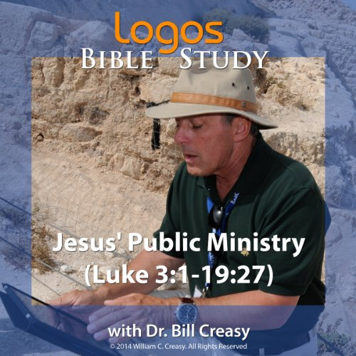Jesus' Public Ministry (Luke 3: 1-19: 27) audiobook cover art