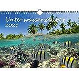 Unterwasserzauber DIN A4 Kalender für 2021 Unterwasser - Geschenkset Inhalt: 1x Kalender, 1x Weihnachts- und 1x Grußkarte (insgesamt 3 Teile)