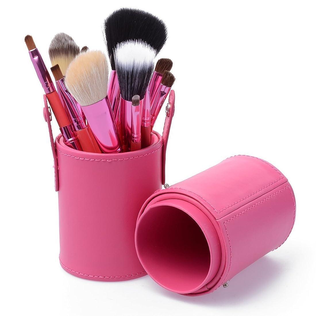シャークサバント階層KanCai メイク ブラシ セット 12本 化粧ブラシ セット コスメ ブラシ 収納ケース付き (ピンク)