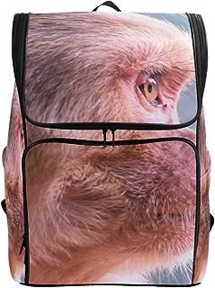 MONTOJ Monkey Stare - Mochila de Senderismo y Viaje con Compartimento para portátil y Mochila de Camping