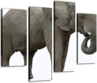 African elephant eating profile view Canvas Print Artwork Wall Art Pictures Framed Digital Print Abstract Painting Room Ho...