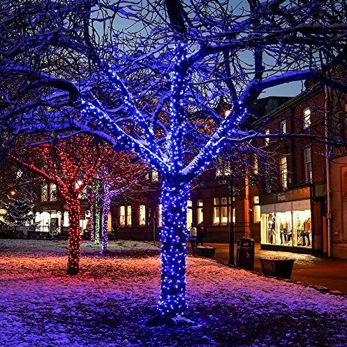 Guirlande Lumineuse Noël Raccordable Qualité Professionnelle Câble Caoutchouc pour Usage Extérieur Prolongé par Festive Lights (Bleu, 20m)