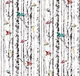 Peel and Stick Bird Song Wallpaper Birch Tree Removable Waterproof Vinyl Design Colorful Greenguard Gold Ink (White)