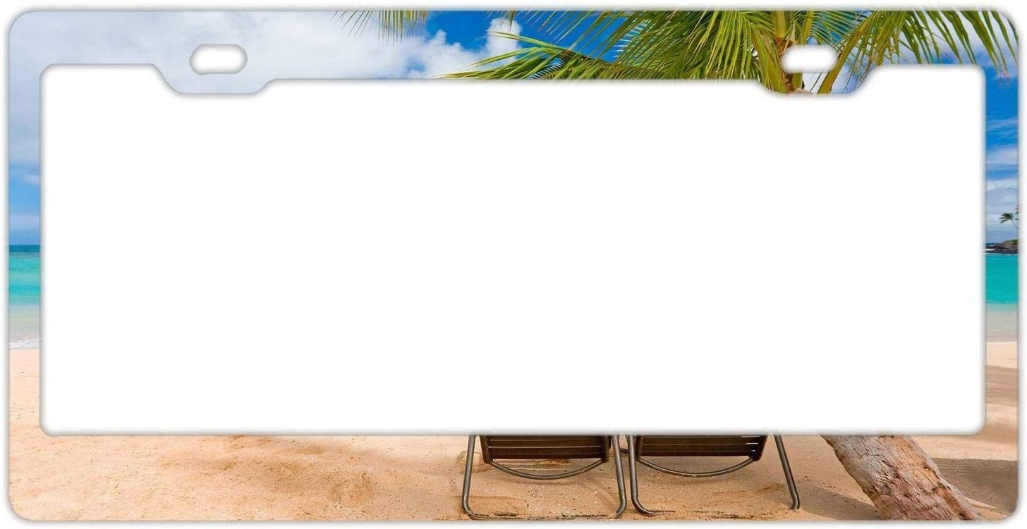 DKISEE Branded goods Aluminum License Plate Tropical Frame Chair Now free shipping Beach