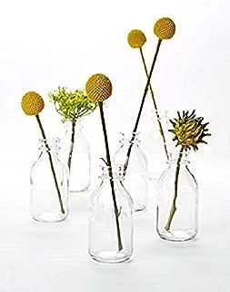 "Serene Spaces Living 6 Glass Vintage Mini Milk Bottles – Elegant Vases for Floral Arrangements at Weddings, Events, Parties, 4.25"" Tall by 2"" Diameter"