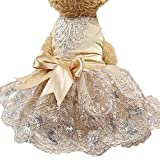 Howstar Pet Dress Lace Princess Wedding Dresses for Dog Puppy Elegant Cute Clothes Soft Silk Apparels (M, Khaki)